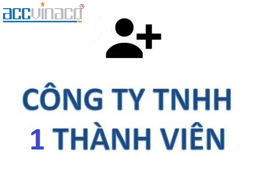 Thủ Tục Giảm Vốn Điều Lệ Công Ty TNHH MTV